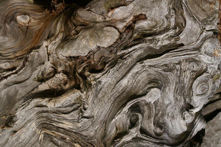 http://www.pini-art.de/files/gimgs/th-18_4---Wooden-Eye--60x80-mit-Rahmen-Schattenfuge---(PICT0023Ausschn)_600.jpg